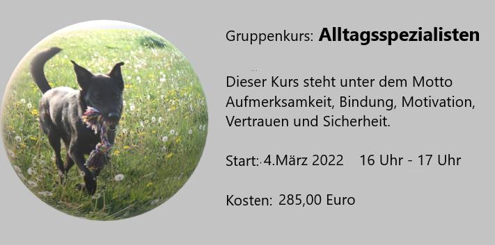 Alltagsspezialisten – Nächster Start am 04. März 2022