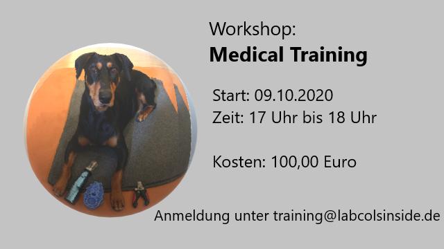 Workshop: Medical Training