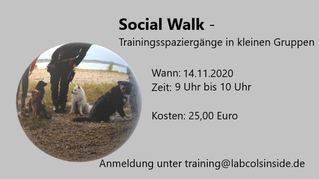 Social Walk -Trainingsspaziergänge in kleinen Gruppen