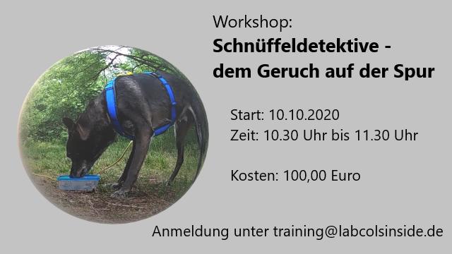 Workshop: Schnüffeldetektive – dem Geruch auf der Spur