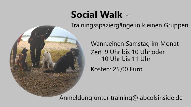 Social Walk -Trainingsspaziergänge in kleinen Gruppen 2021