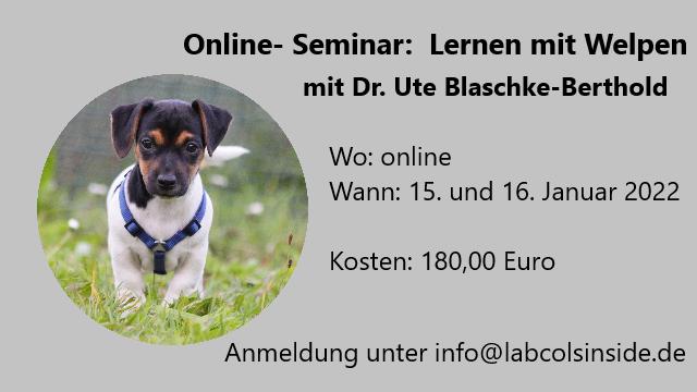 Lernen mit Welpen- mit Dr. Ute Blaschke Berthold AUSGEBUCHT