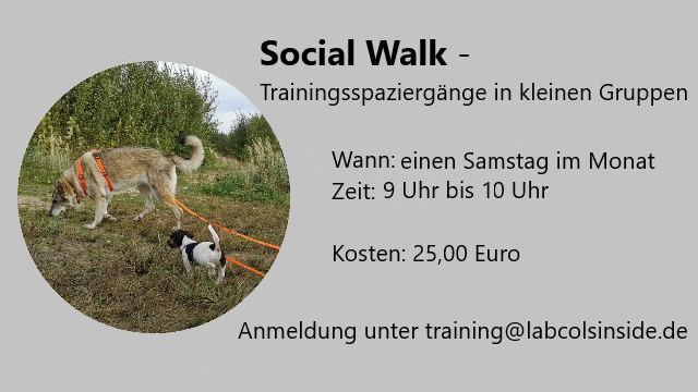 Social Walk -Trainingsspaziergänge in kleinen Gruppen 2022